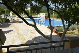 pool view studio george