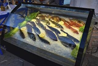 vassiliki george studios fresh fish